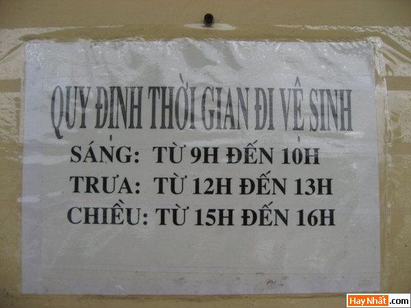Vui cùng thông báo, bảng hiệu 18.11