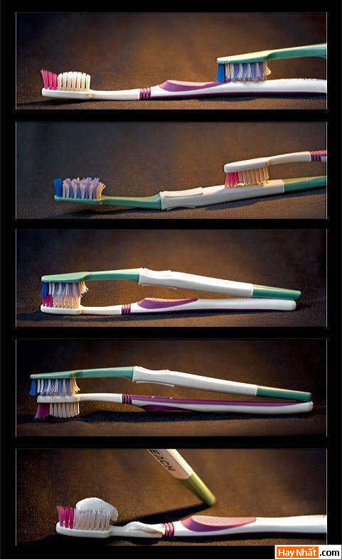 Chuyện tình bàn chải đánh răng