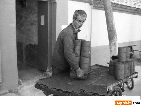 Bush sang Việt Nam làm việc
