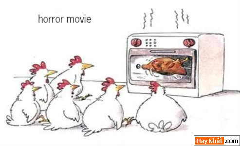 Gà, Con gà, Động Vật, Kinh dị, Hinh vui, Hình vui, Hình vui nhất, Hinh vui nhat, Tranh vui, Anh vui, Ảnh vui, Hinh anh vui, Hình Ảnh Vui