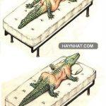 Nguồn gốc Cá Sấu (18+)
