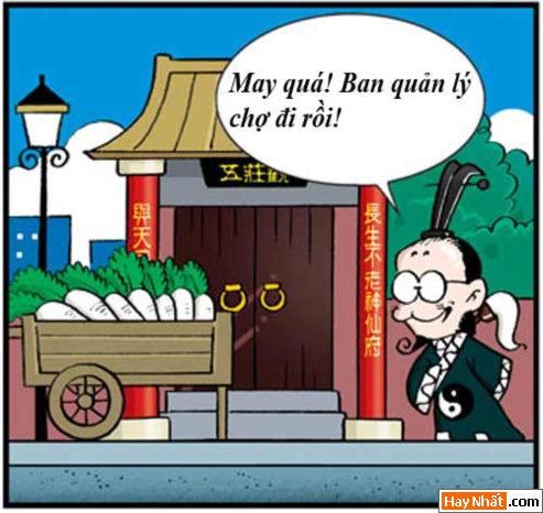 """Tân Tây Du Ký (31): Nhân sâm """"nhái"""""""