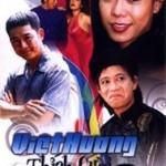 DVD: Việt Hương Thích Cười 2