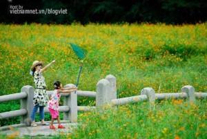 cau-chuyen-cam-dong-ve-me015
