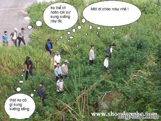 Văn hóa Việt !?